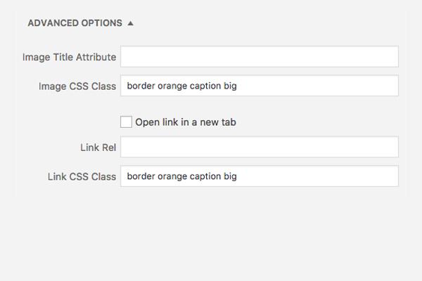 WordPress Caption Text Overlay